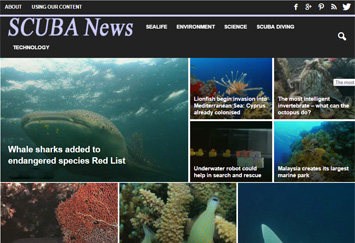 Web portfolio example - SCUBA News